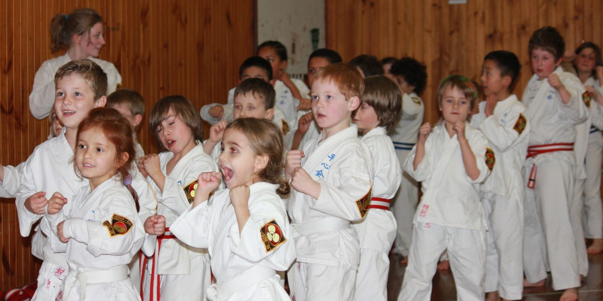 Children's Karate Class